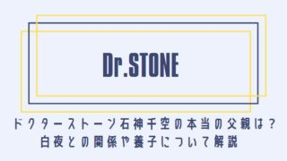 ドクターストーン石神千空の本当の父親は?白夜との関係や養子について解説